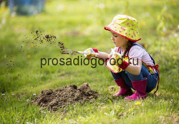 огород для детей