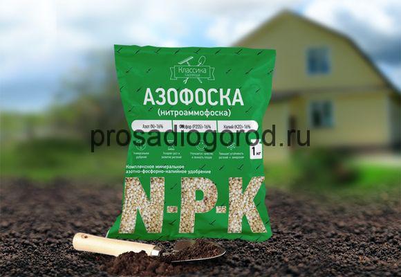 азофоска нитроаммофоска удобрение для огорода
