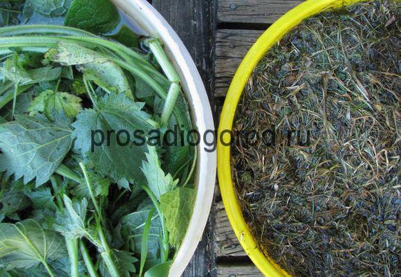 удобрение из травы для огорода