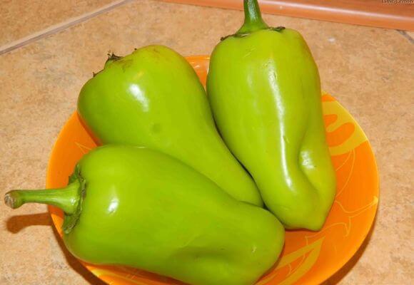 плоды перцев ласточка