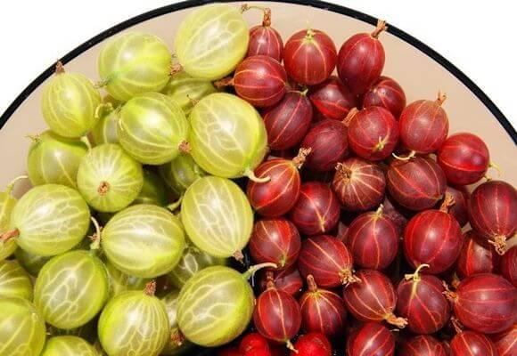ягоды на тарелке