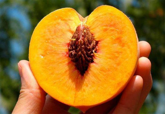 половинка фрукта