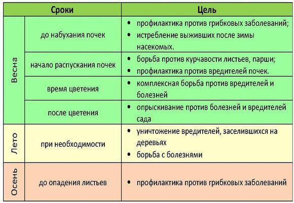 схема опрыскивания персика