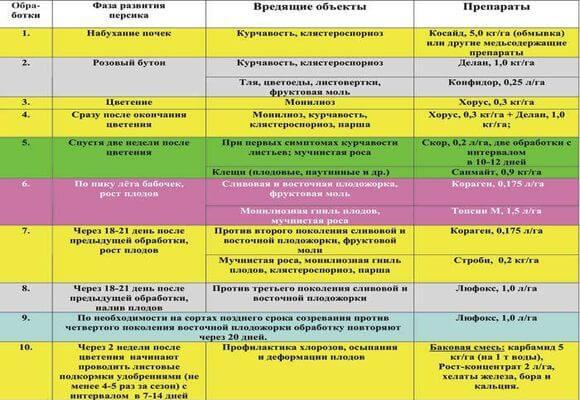 схема выращивания