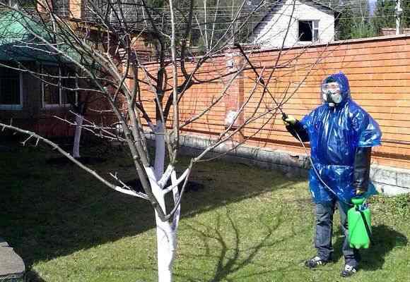 Напыление на дерево