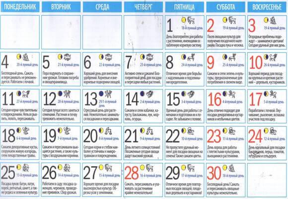 календарь работ июнь 2018