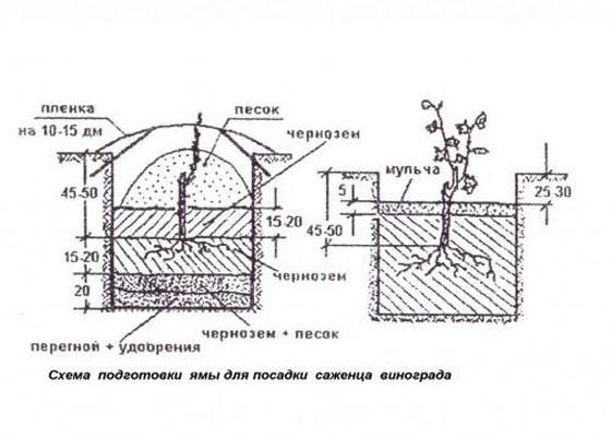 схема ямы