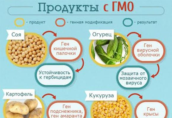 продукты с гмо