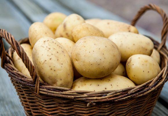 картошка для еды