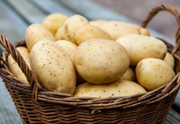 картофель в корзинке