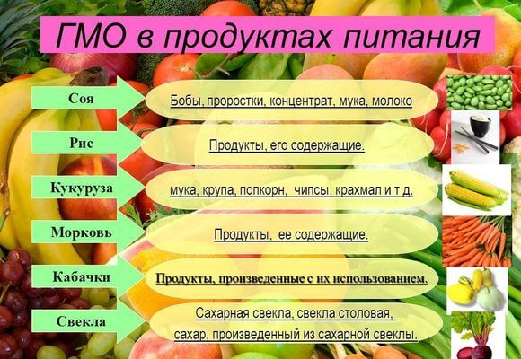 список продуктов гмо