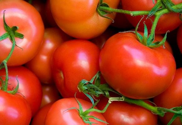 Много помидор