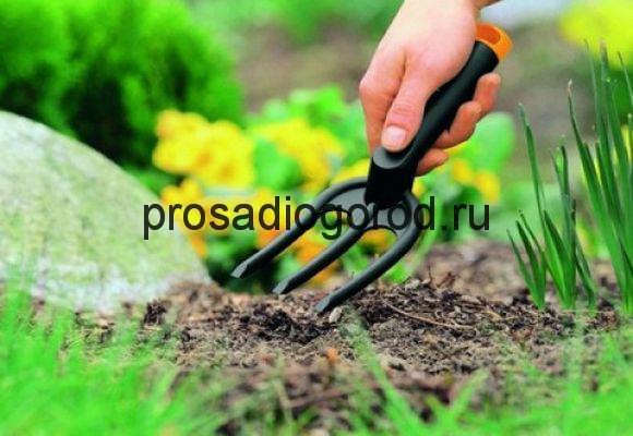 работа в огороде на пасху