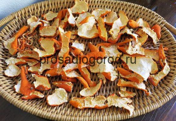 применение сушеных корок апельсина как удобрения