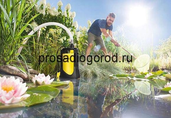 источник для полива огорода