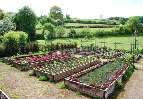 планировка грядок на огороде