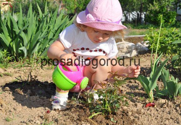 ребенок поливает огород