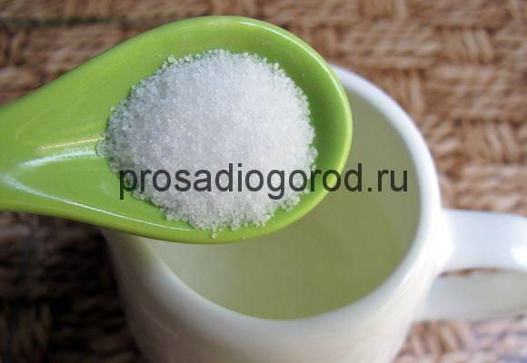 Янтарная кислота польза и вред для растений