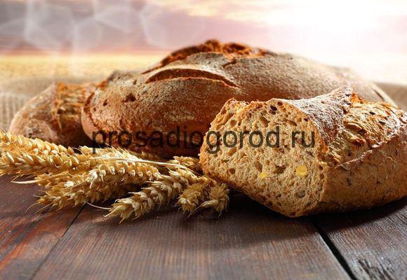 хлеб как удобрение для огорода