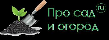 prosadiogorod.ru