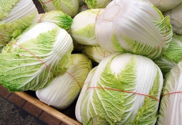 хранение пекинской капусты