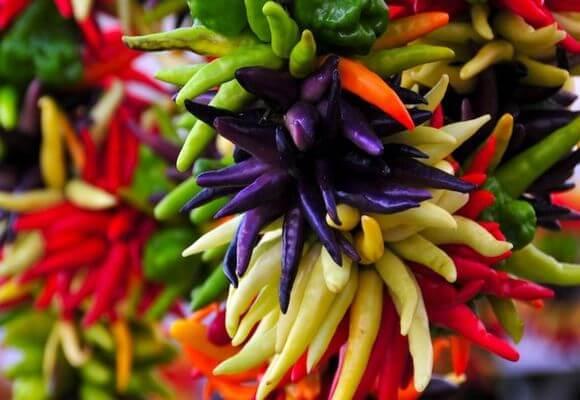 Как вырастить декоративный перец