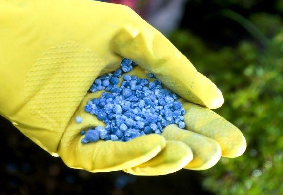 минеральные удобрения в руке