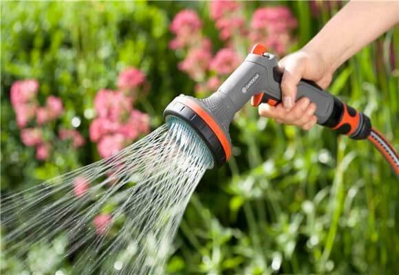 полив молодых растений