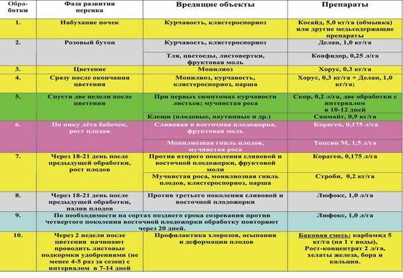 Схема обработки персика