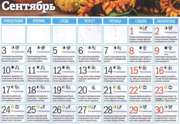 календарь работ на сентябрь 2018